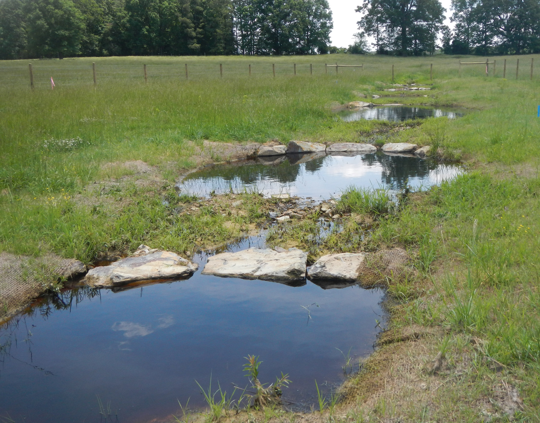 Norkett Branch Stream Mitigation Project