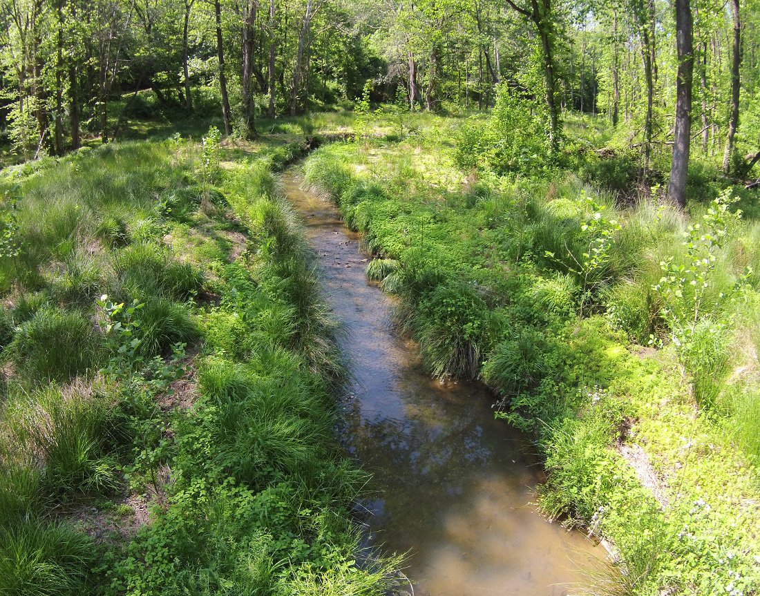 Little Troublesome Creek Mitigation Project