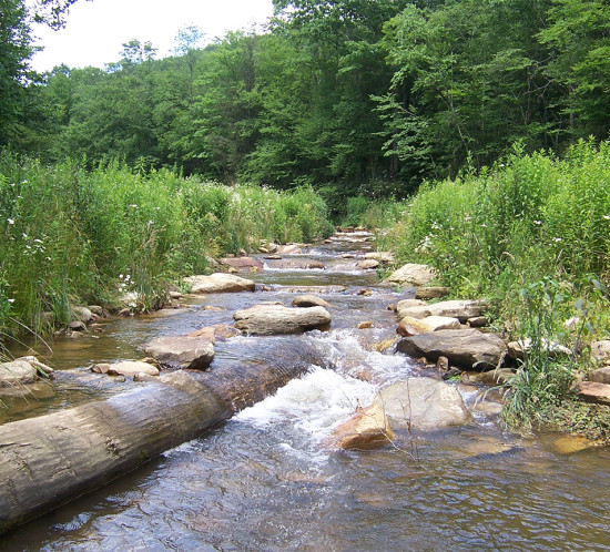 stream restoration, permitting