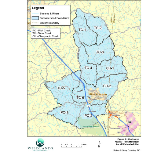 Ararat-Pilot Mountain Local Watershed Plan