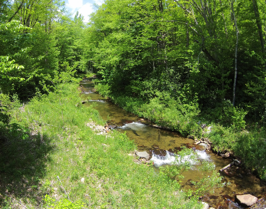 river restoration, river assessment