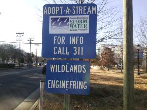 Wildlands adopts a stream