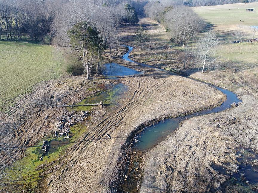 Buckwater Mitigation Site