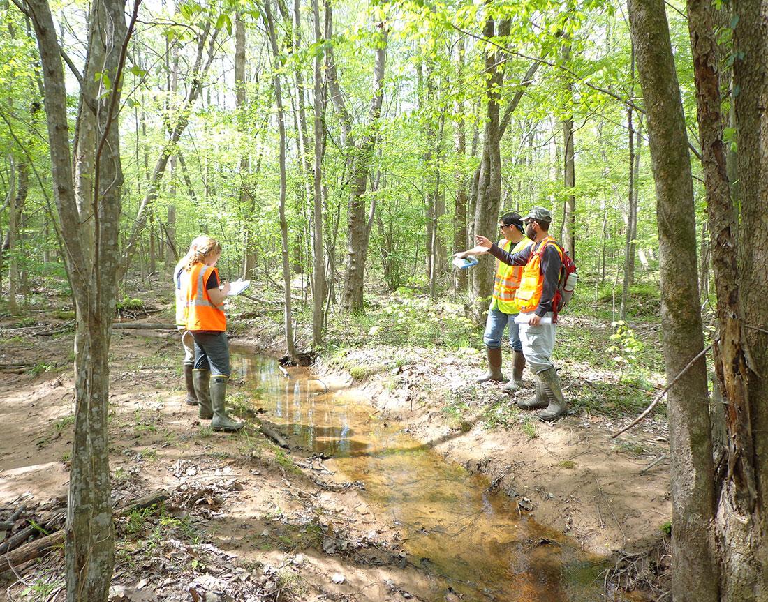 Little Lick Creek Watershed Improvement Plan