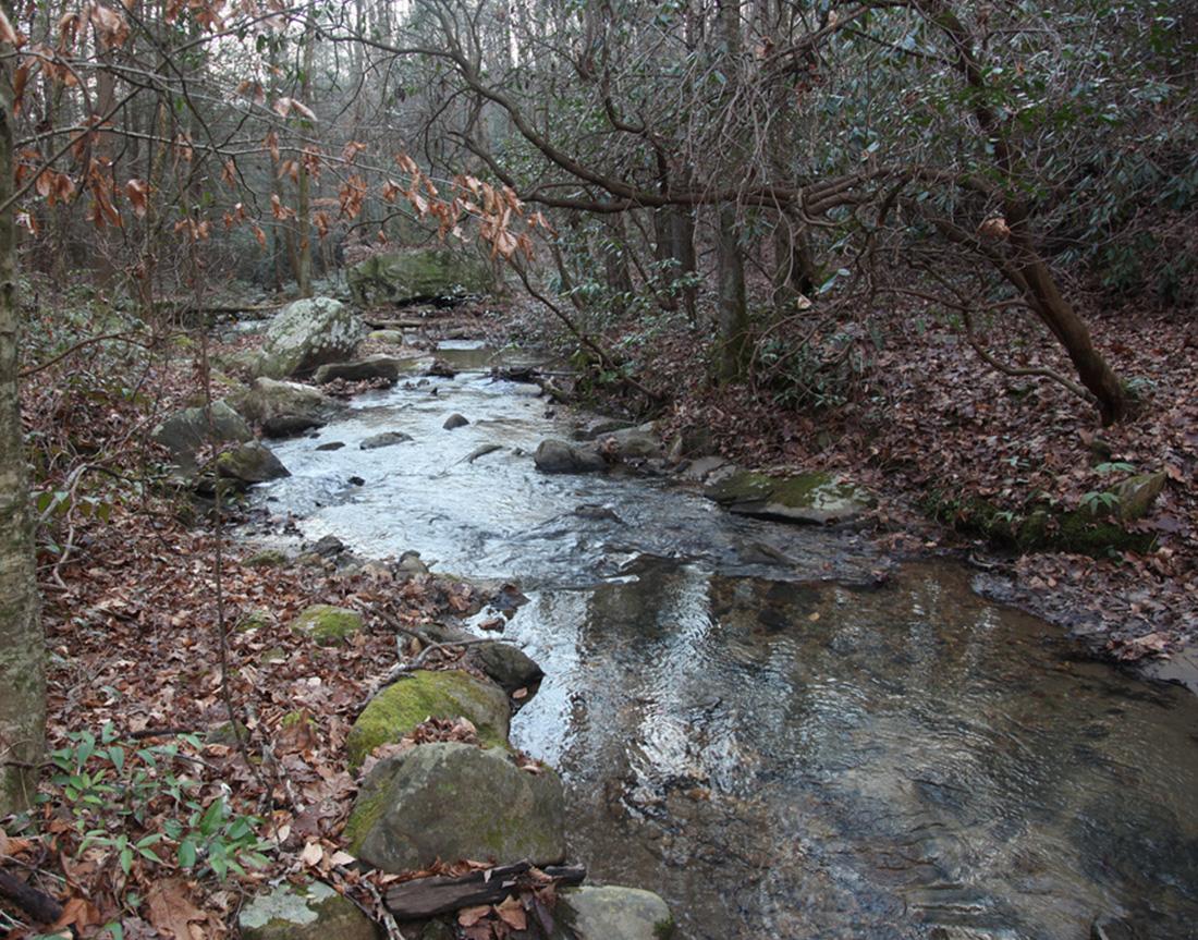 box creek mitigation bank
