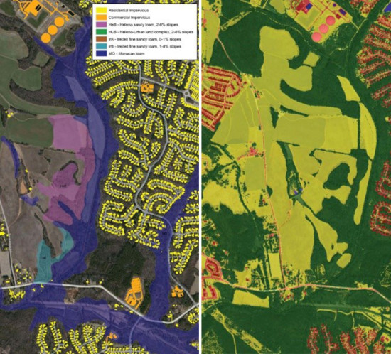 wetland mitigation identification and prioritization