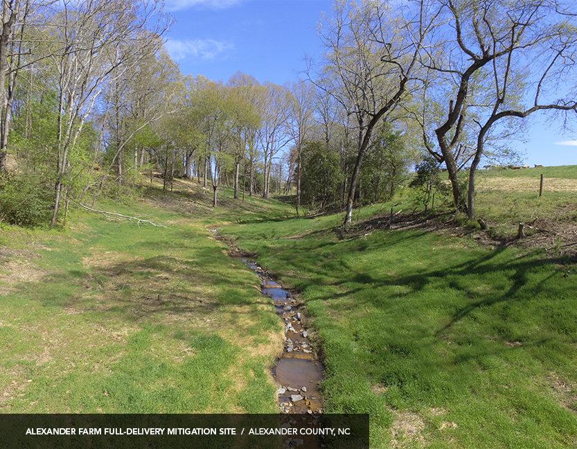 NC stream restoration