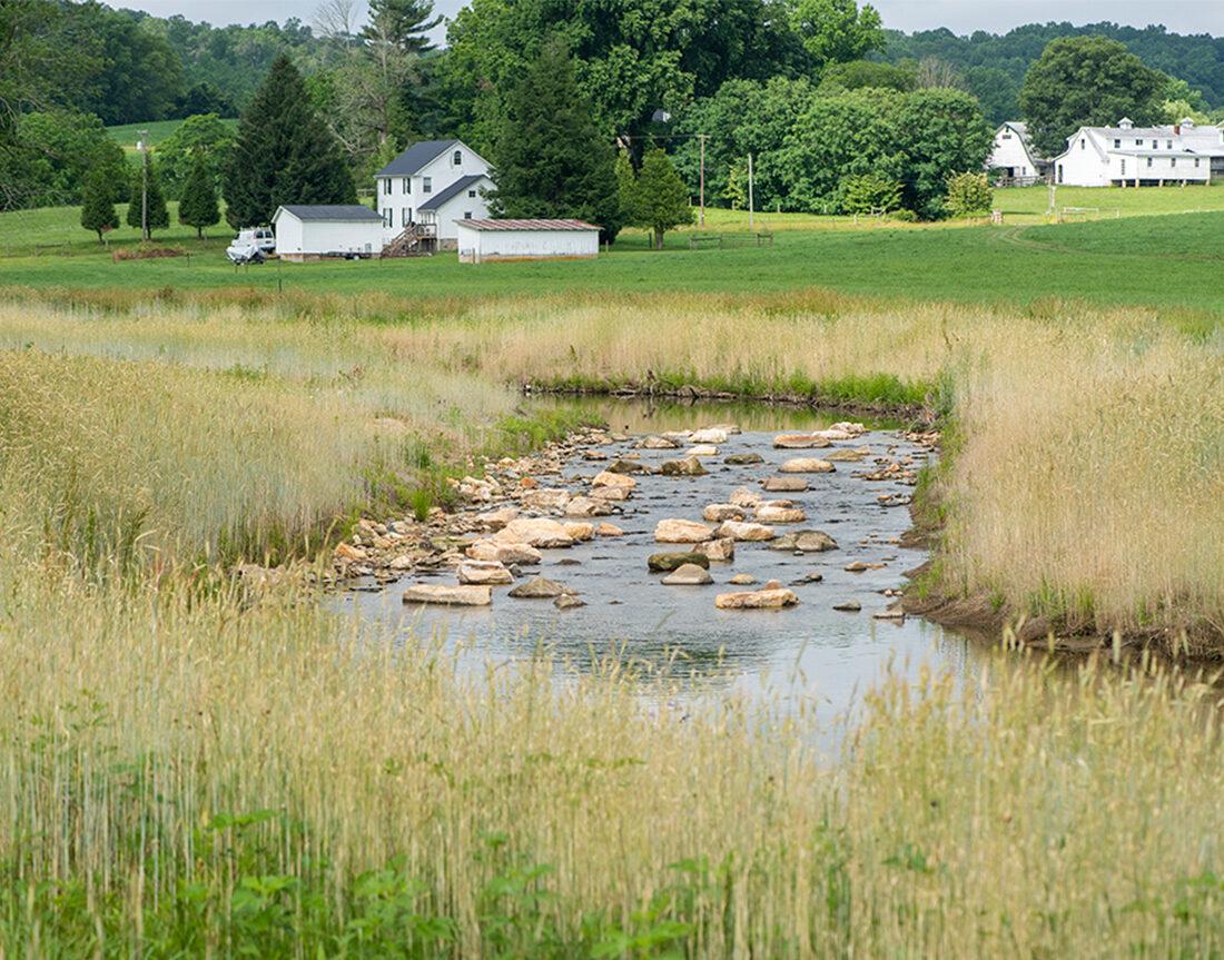 MDOT stream mitigation, Marylea Stream Restoration